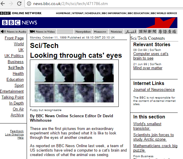 seeing-through-a-cats-eyes